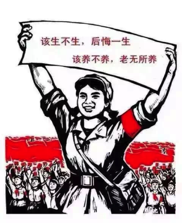 family planning policy in china essay China allows the government to have full control over family planning to help  reduce the population in 1979 china created a policy called the one child law .